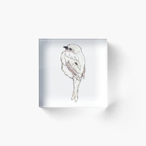 Zarter Vogel. Zeichnung Koloriert Acrylblock