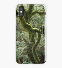 Cloud Forest Treeferns and Hanging Mosses iPhone Case/Skin