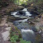 The Narrows Of Seneca Falls by Gene Walls