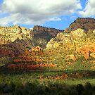 Sedona Munds Mountain by Deborah Lee Soltesz