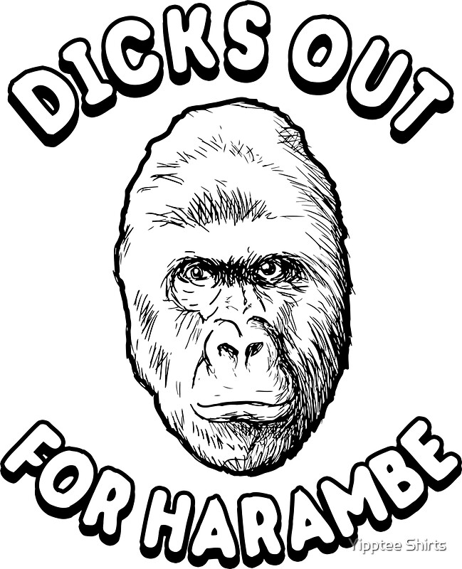 Image result for Dicks Out for Harambe
