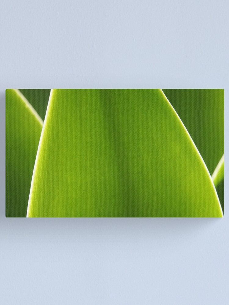 Alternate view of Agave Canvas Print