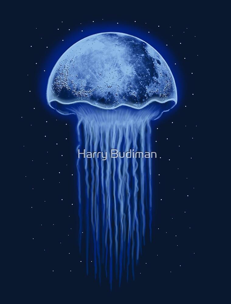 Moon Jellyfish by Harry Fitriansyah