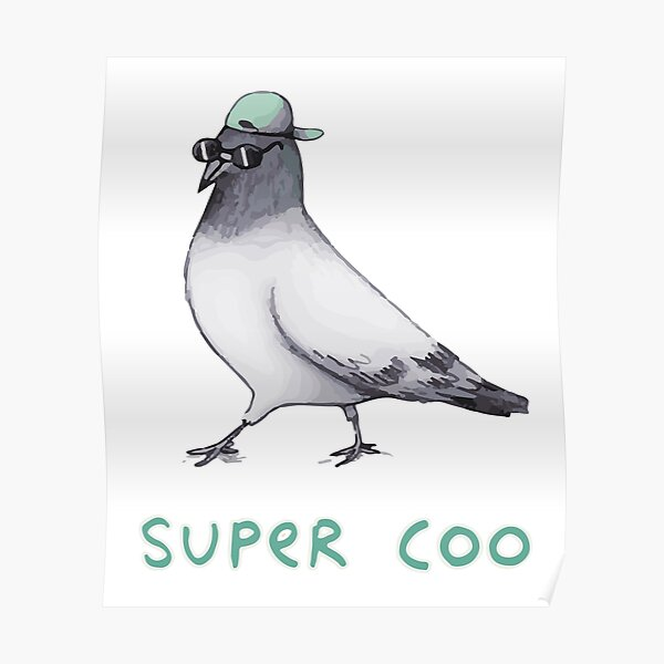 super coo pigeon Poster
