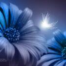 In The Fields Of Imagination by Stephanie Rachel Seely
