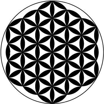 Flower Of Life - Black by Americ