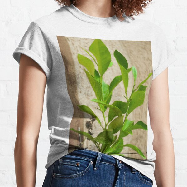 Picture of a green plant Classic T-Shirt