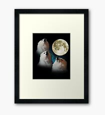 Gabe the Dog - Three Gabe Moon Framed Print