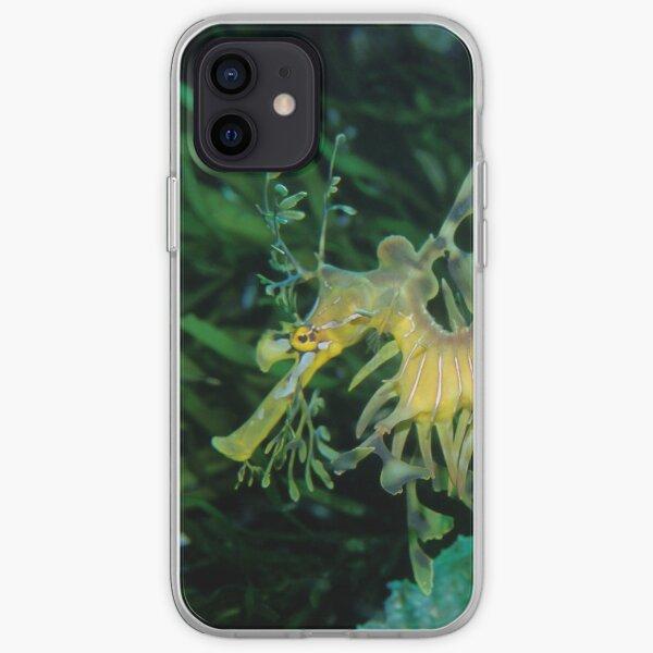 Leafy Seadragon iPhone Soft Case