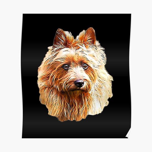 Australian Terrier Red  Poster