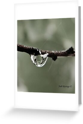 Droplet by Judi Rustage
