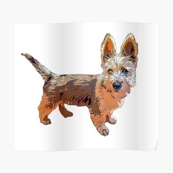 Australian Terrier Puppy Art Poster