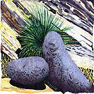 BIG BOLDER BOULDERS~A calendar of ROCKS by James Lewis Hamilton