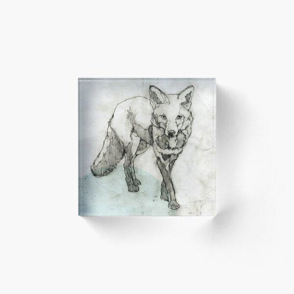 Fox drawing Acrylic Block