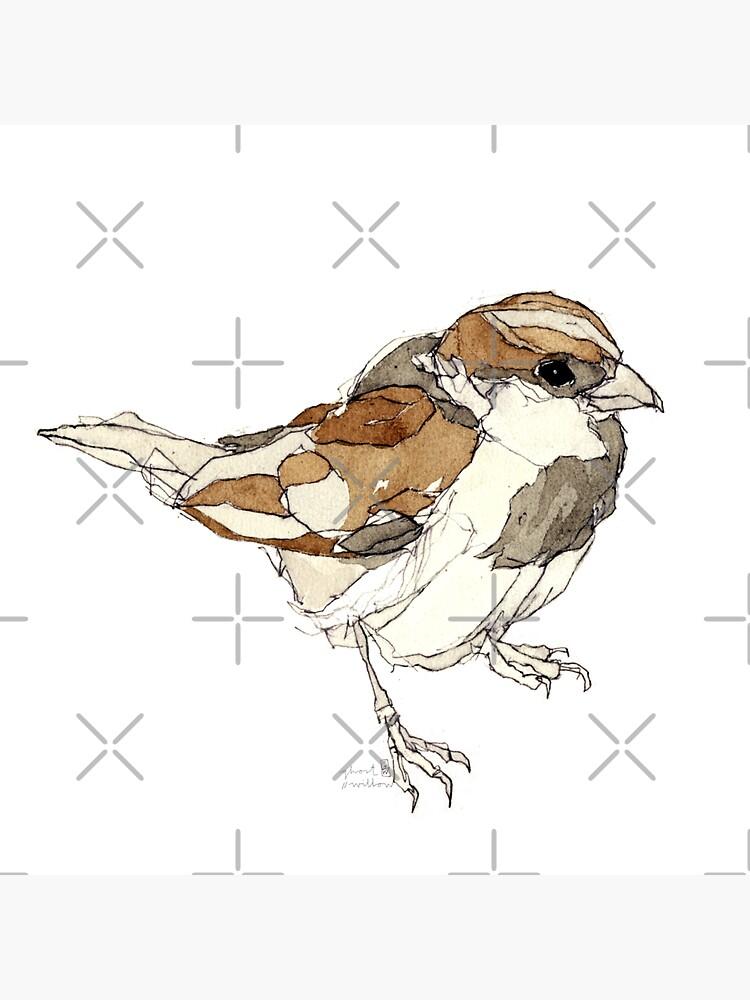 Spatz Kolorierte Zeichnung von ghostwillow