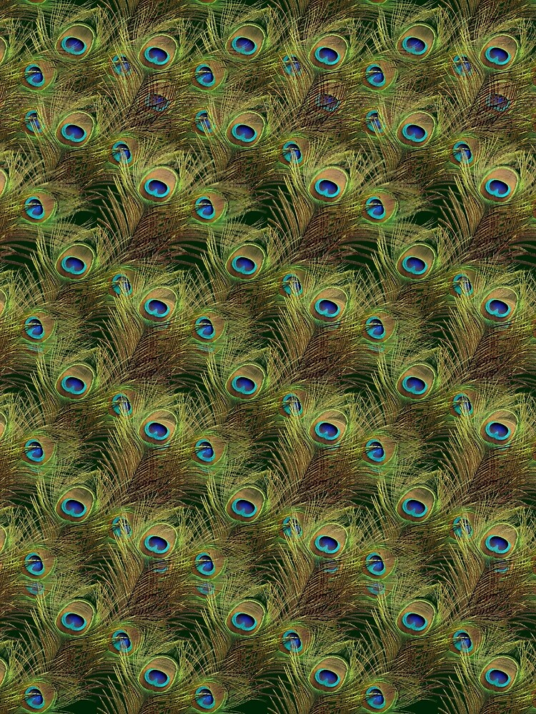 Peacock Feathers by vkdezine