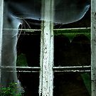 The old Window........... by Imi Koetz