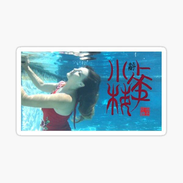 Xiao Mei Underwater Oracle Bone Signature Seal Calligraphy Sticker