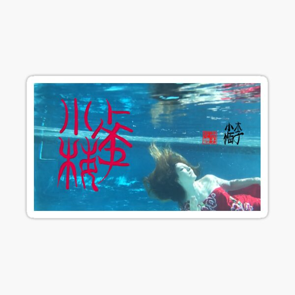 Xiao Mei Underwater Soma Oracle Bone Signature Seal Calligraphy Sticker