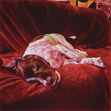 Artist's Dog on Sofa by partylevitation