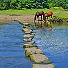 2 Horses at Famous Ogmore Stepping Stones (Wales) by Remo Kurka