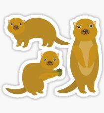 Squirrels with an Acorn Sticker