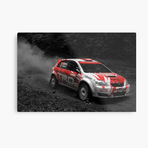 Forest Rally Metal Print