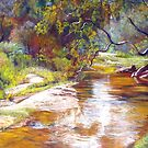 Hughes Creek, Avenel by Lynda Robinson