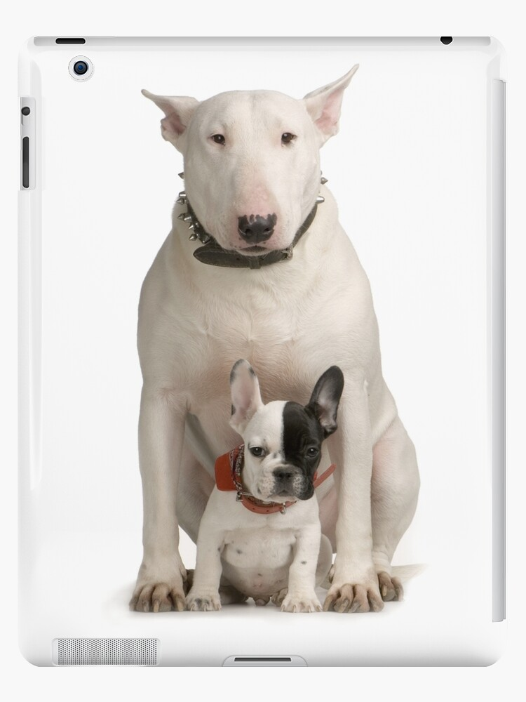 'English Bull Terrier & Frenchie Friend' iPad Case/Skin by The Curious Dog  Shop