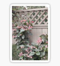 Dragon Wing Begonias - Digital Oil Painting Sticker