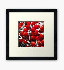 Manila Palm Red Framed Print