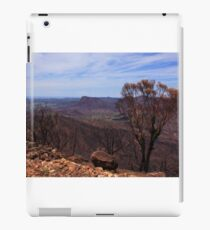 After the Bushfires in The Warrumbungle Nation Park iPad Case/Skin