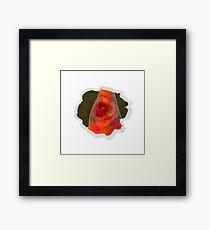 Expired Polaroid Flower Framed Print