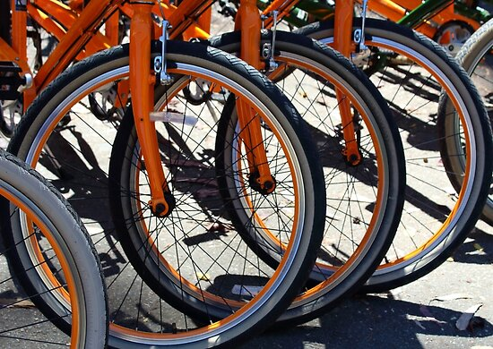 Bike Wheels by melips