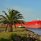 SBI ELECTRA BULK CARRIER. by Phil Woodman