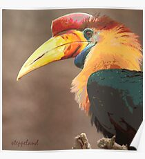The beak makes the bird - photo-painting Poster