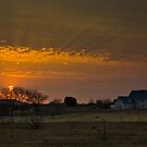 The Pink House at Sunset by Martie Venter