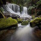 Horseshoe Falls, Mt Field by Jim Lovell