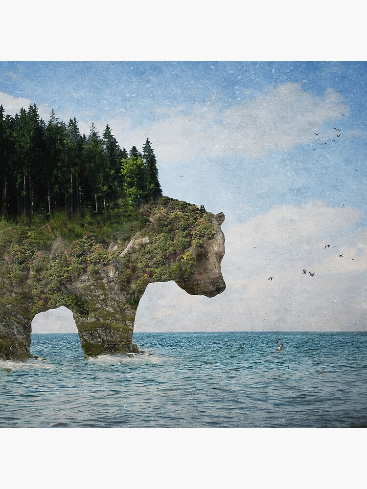 Ursidora: The Invisible Bear Island by BelleFlores