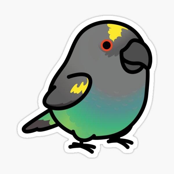 Chubby Meyer's Parrot Sticker
