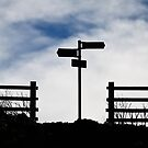 Which Way to Whitby? by dansLesprit