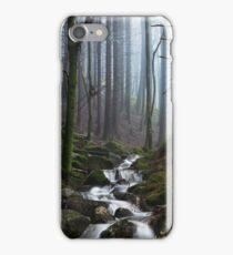 Misty Forest Stream iPhone Case/Skin