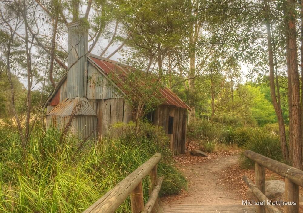 Rustic Treasure in the park by Michael Matthews
