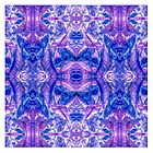 Croton Collection - Purple by William Braddock