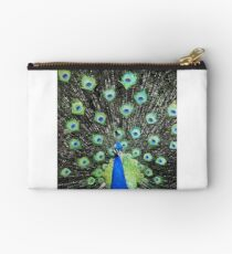 Vanity Has a Thousand Eyes Studio Pouch