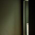 The Door by Martie Venter