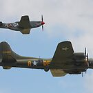 Flying Fortress (Sally B) & Mustang by brummieboy
