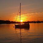 Sunrise - June 2016 by brummieboy