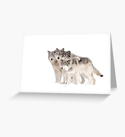 The Pack - Timber wolves Greeting Card