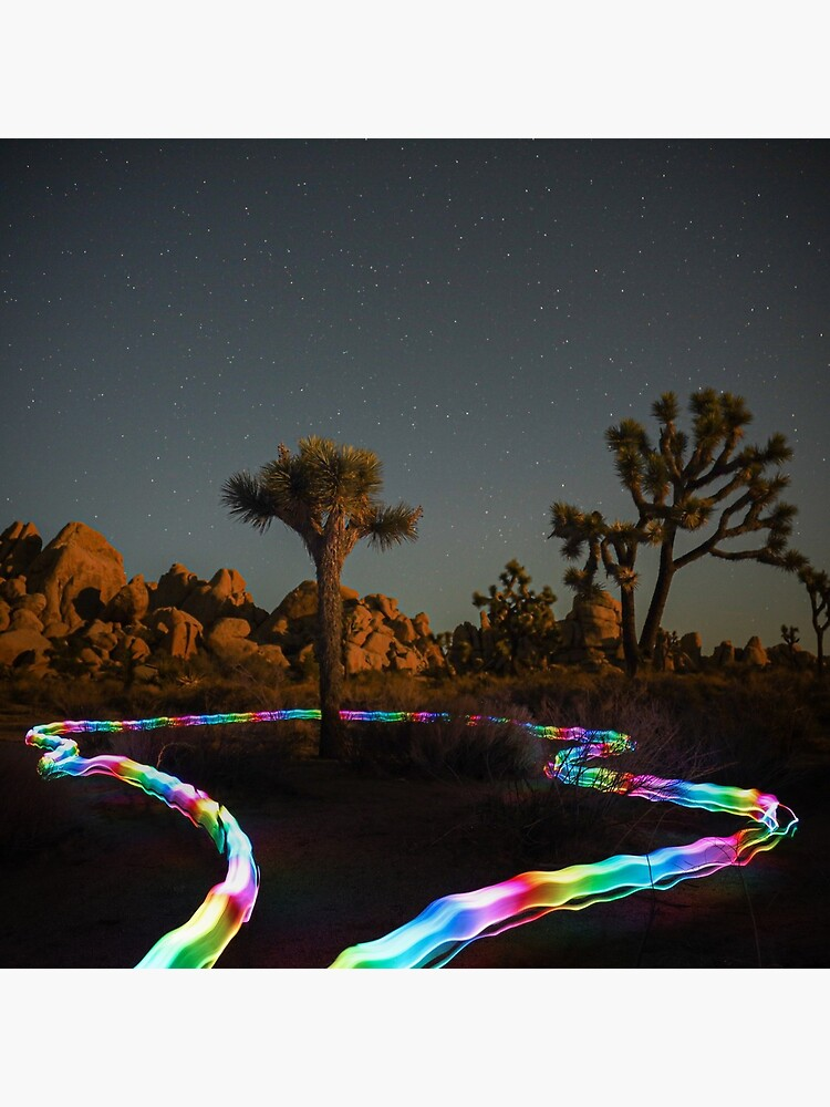 Trippy Joshua Tree at Night with Light Trails by charlimoro